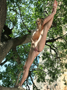 Beautiful teen with an ass to die for Melina D poses naked up in a tree